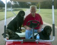 john jordan with dogs in golf cart
